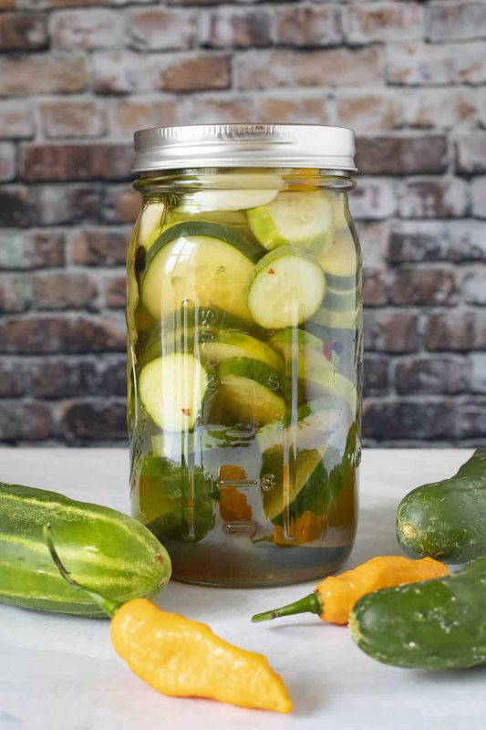 Refrigerator Pickles Recipe - Chili Pepper Madness