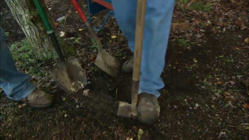 How to Choose and Use Shovels and Other Digging Tools - This Old House