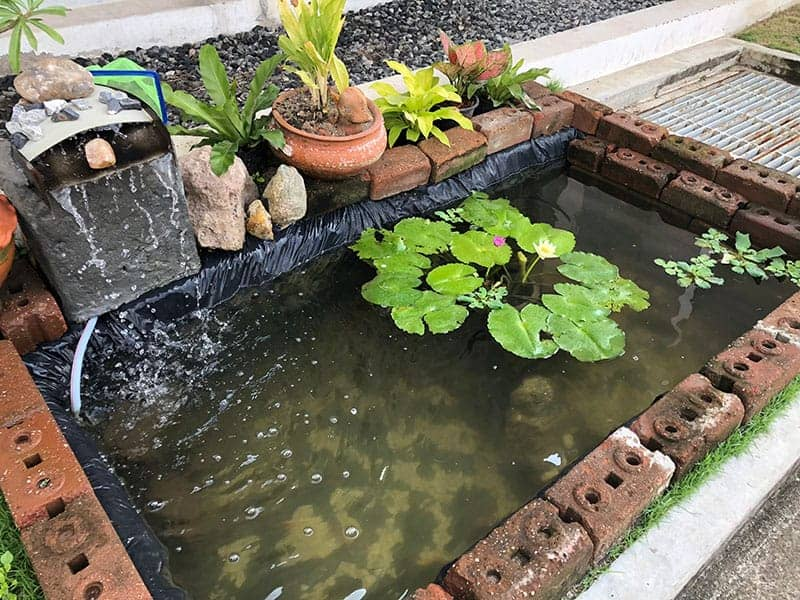 25 Amazing Backyard Garden Waterfall Ideas | Green and Vibrant