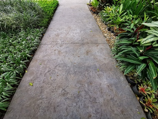30 Walkway Ideas For Inspiration | Trees.com