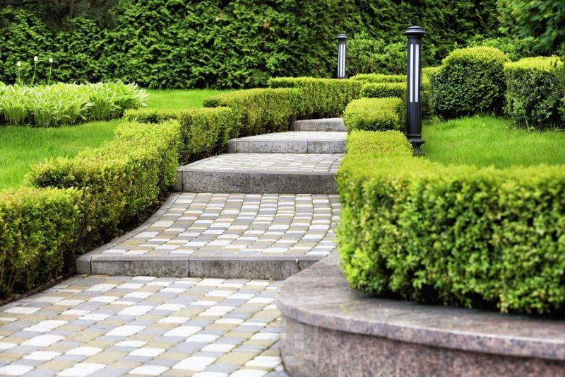 D:\@ARSIP\2020\NOVEMBER\walkway-and-bushes.jpg