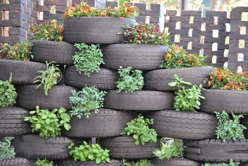 Great Garden Ideas Using Old Tires - AgNet West