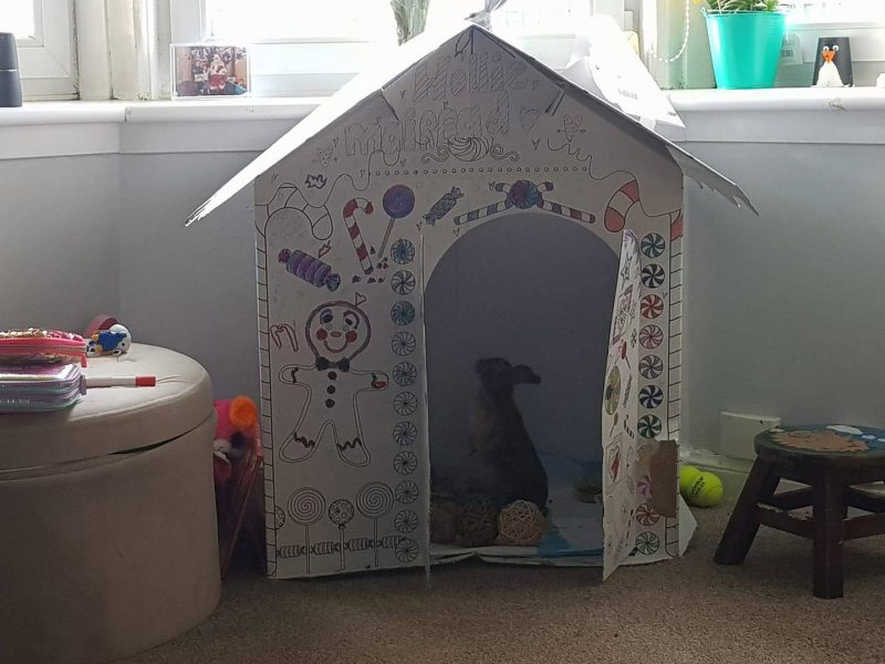 Home Bargains is selling a DIY cardboard playhouse for £9.99 – and adults  are having more fun colouring it in than the kids