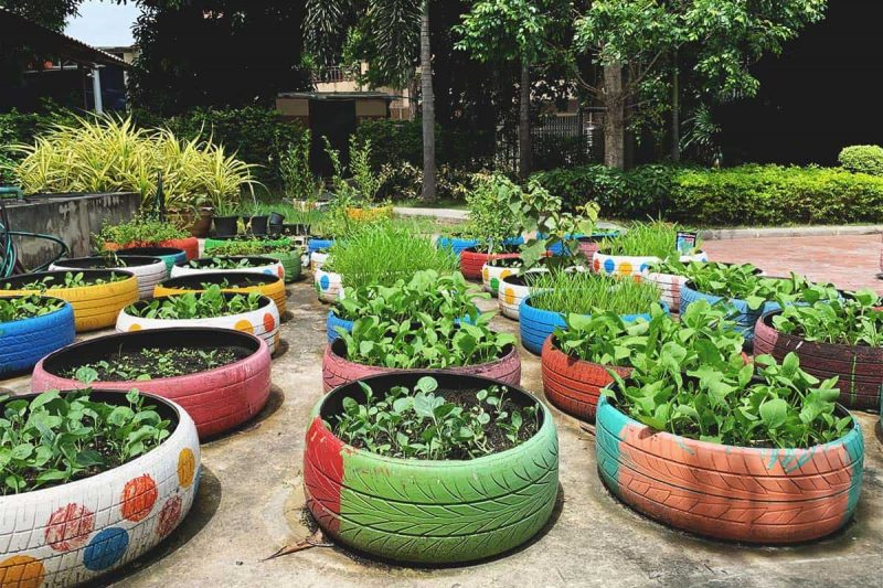 How to Start a Vegetable Garden using Old Tires