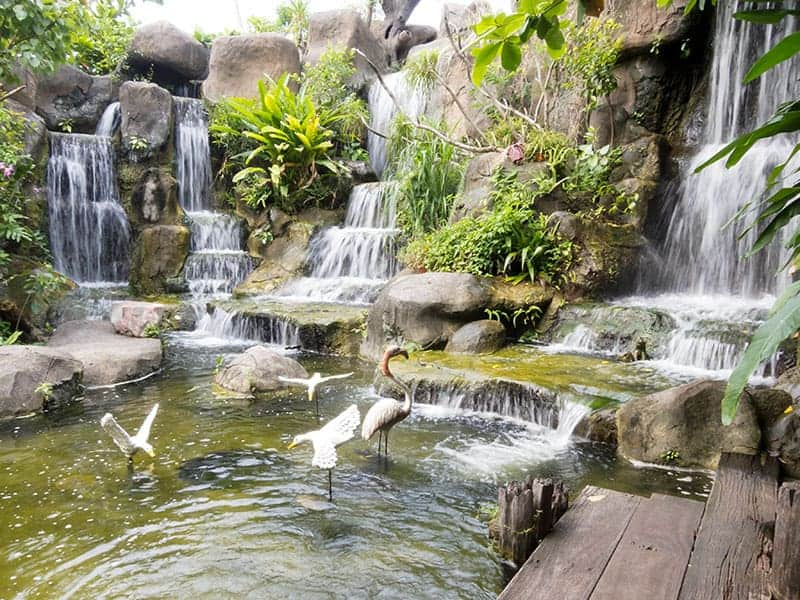 https://www.trees.com/sites/default/files/inline-images/garden-waterfall-ideas/ponds-and-waterfalls.jpg