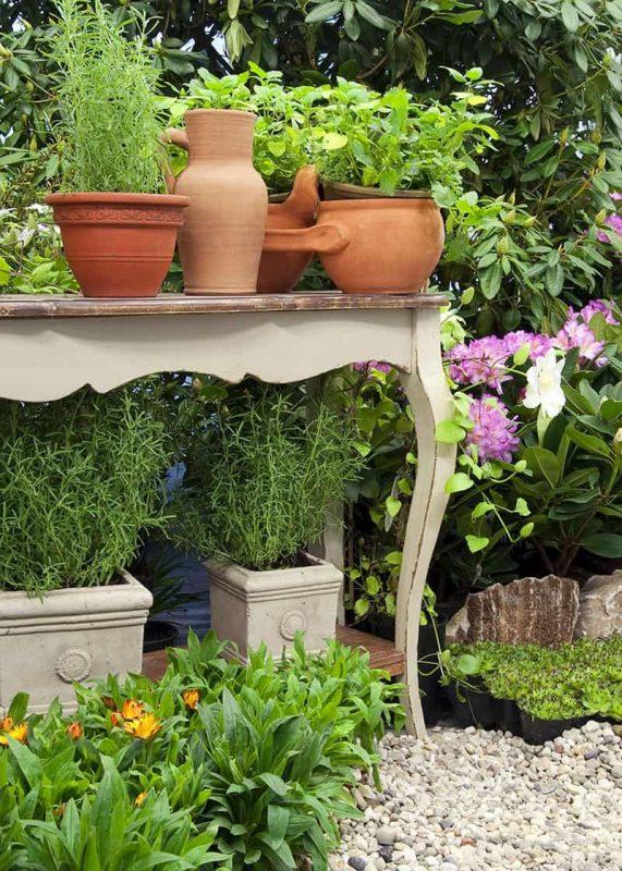 Pin on Garden / Yard
